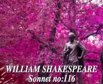 sonnet 116 summary and analysis