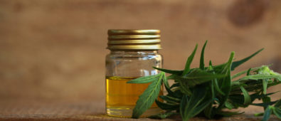 What is cannabis oil