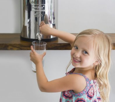 What type of water filter is best for the home