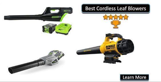 Best Cordless Leaf Blowers